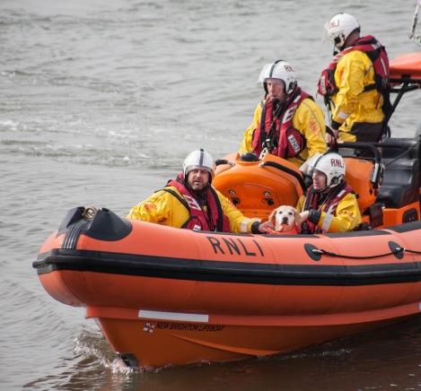 Martha on the lifeboat