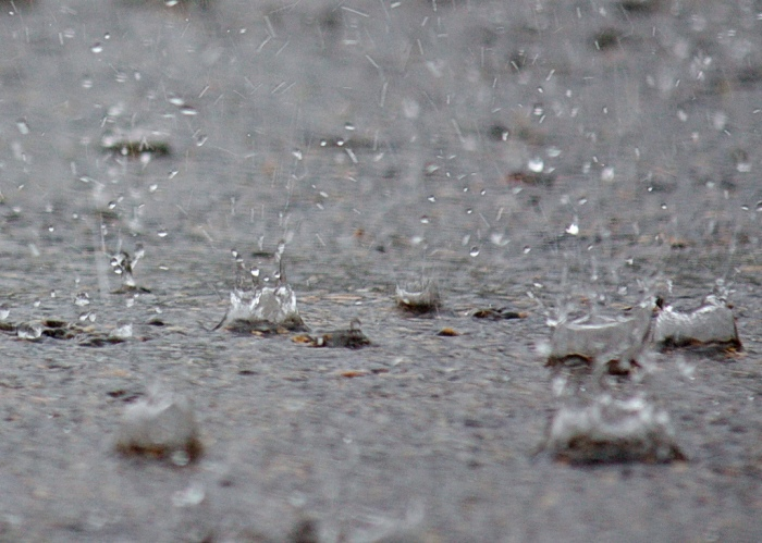Heavy rain expected this week
