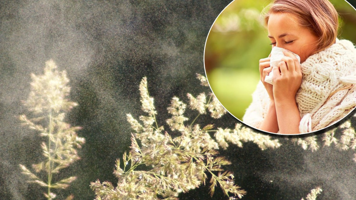 Merseyside warned of hey fever hell as pollen bomb hits the region which could last several weeks